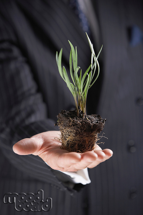 Businessman Holding a plant without pot mid-section