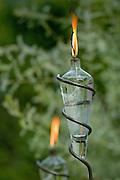 Lit backyard lanterns.