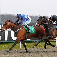 Tadabeer and S Donohoe winning the 2.50 race