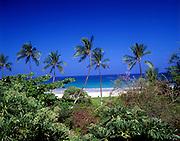 Hapuna Beach, Kohala Coast, Island of Hawaii