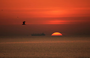 Sunset or sunrise at sea with a firey sun peeking over the horizon. A cargo ship sails by with sea birds in the sky.