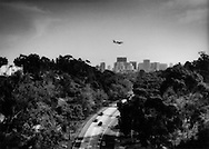Wooded freeway delivers commuters into downtown San Diego, California, USA.  Though drought resistant eucalyptus (an exotic species) would survive but not thrive without irrigation.