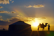 Mongolei, MNG, 2003: Kamel (Camelus bactrianus). Silhouette einer Jurte und eines Kamels mit seinem Besitzer bei Sonnenuntergang, Süd-Gobi. | Mongolia, MNG, 2003: Camel, Camelus bactrianus, silhouette of a yurt (mongolian Ger) and a camel with its owner beside, sunset in the South Gobi. |