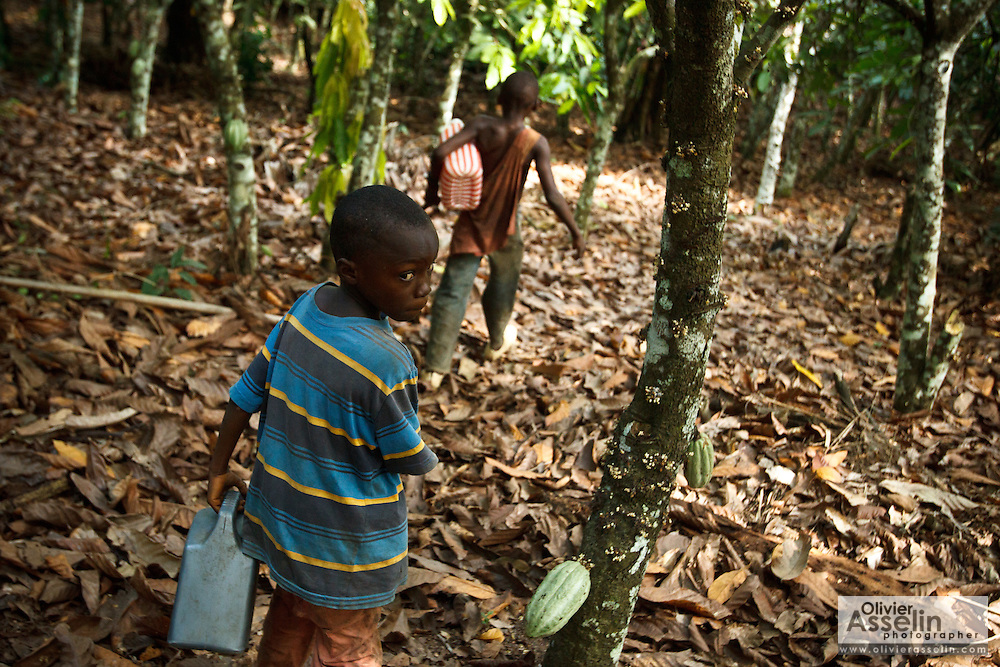 Tanic Kouakou, 8, (L) and his cousin Firimin Kouassi, 13, head out to fetch water on Tanic's father's cocoa plantation near the town of Moussadougou, Bas-Sassandra region, Cote d'Ivoire on Monday March 5, 2012.