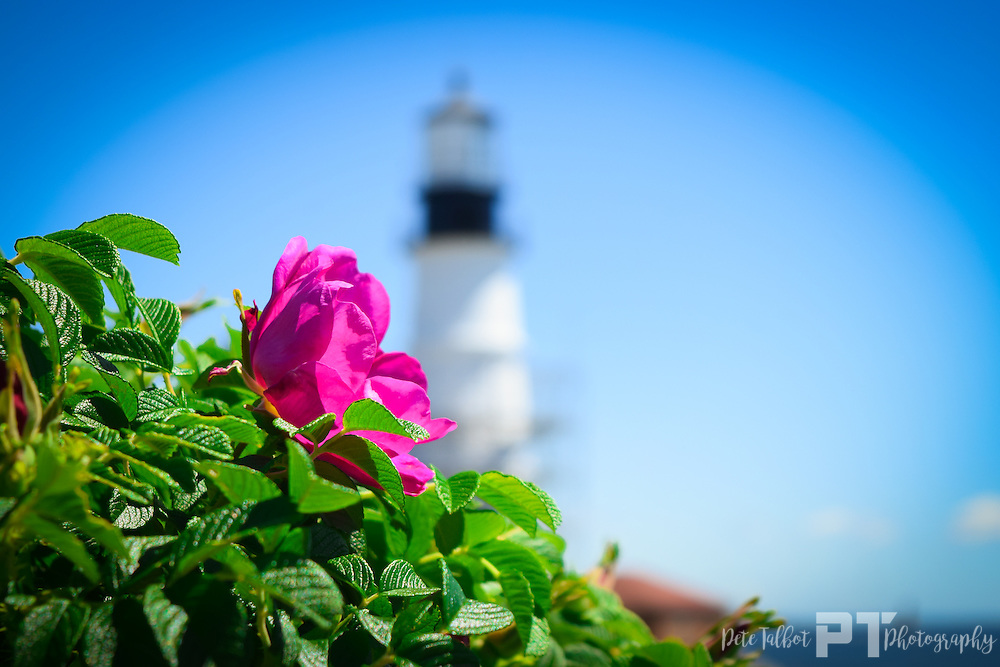 Portland Maine Photography