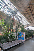Interior of the Atocha train station and botanical garden, Madrid, Spain,