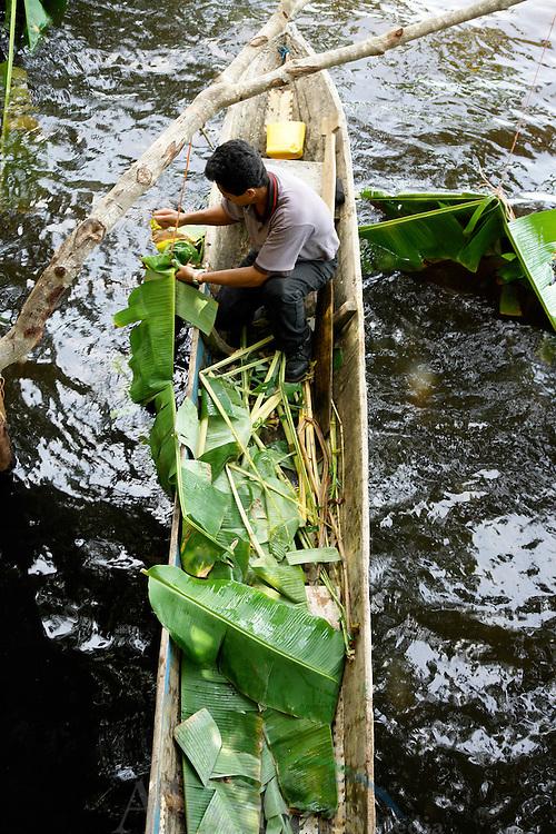 El Humedal San San Pond Sak tiene una extensi&oacute;n territorial de 16,987.48 hect&aacute;reas, que abarcan manglares, canales, lagunas, playas y ambientes marinos costeros de gran importancia.  <br /> <br /> Fue designado Humedal de Importancia Internacional  el  9 de junio de 1993 y  registrado en la Lista de Humedales de Importancia Internacional como el Sitio N&deg; 611. <br /> <br /> El Humedal de Importancia Internacional San San Pond Sak, posee ambientes de humedales tanto con influencia marina como de los r&iacute;os que lo  atraviesan: el Changuinola, el San San y el Sixaola.  Desde el punto de vista geol&oacute;gico, el &aacute;rea conserva muestras de yacimientos de turba en la regi&oacute;n sureste; y est&aacute; inmersa en una concurrencia de fallas y fracturas de  importancia en la micro placa de Panam&aacute;.<br /> <br /> San San Pond Sak protege importantes muestras de los ecosistemas costeros, que incluyen  playas que sirven como lugar de nidificaci&oacute;n de las tortugas marinas y lagunas costeras y r&iacute;os que sirven de h&aacute;bitat a los amenazados manat&iacute;es y a numerosas aves marinas costeras.<br /> <br /> <br /> &copy;Alejandro Balaguer/Fundaci&oacute;n Albatros Media.