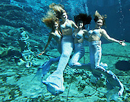 "Mermaids at Weeki Wachee Springs in Florida.  This ""Before Disney"" venue harkens back to an earlier time in Florida tourism."