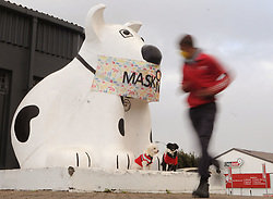 "SOUTH AFRICA - Cape Town - 03 June 2020 - Coronavirus Lockdown - The original Spotty Dog stood proud at its home on the Main Road of Retreat in Cape Town. He was, according to an advert released by his then-owners, South Africa's first canine-shaped roadhouse when he was assembled in 1938. He was designed for a Mrs Barnes with the official designated usage of a ""hot dog saloon,"" but over the years his duties morphed and at one point he was even used as a vendor of fruit and vegetables. Today, a smaller version of the Spotty Dog stands in the same but vastly altered location outside Bu Co in Retreat. Recently, the famous dog was spotted wearing a large fabric mask which reads, ""Mask On"".  Picture: Tracey Adams/African News Agency(ANA)"