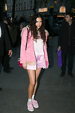 APR 24 2014 Stealing Banksy? - VIP launch party arrivals