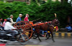 July 24, 2017 - Allahad, Uttar Pradesh, India - Participants riding their horse cart during rain as they take part in traditional Gahrebaji/Horsecart Race organized on every Monday of Shrawan month in Allahabad. (Credit Image: © Prabhat Kumar Verma/Pacific Press via ZUMA Wire)