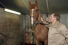 Demeersman Dirk 2006