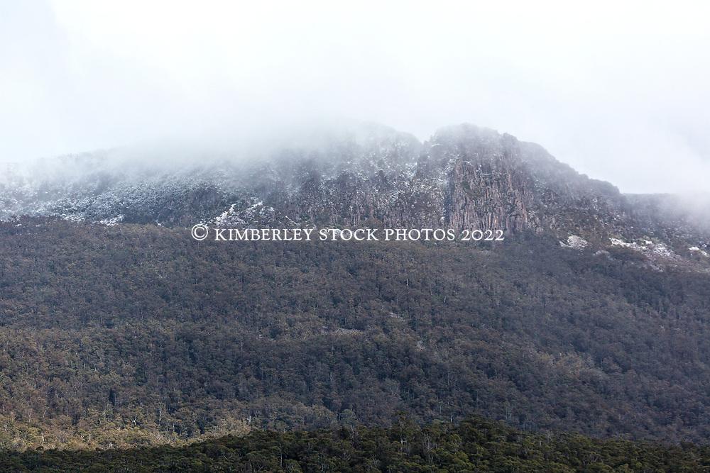 Snow showers on the Great Western Tiers at Liffey in noerthern Tasmania