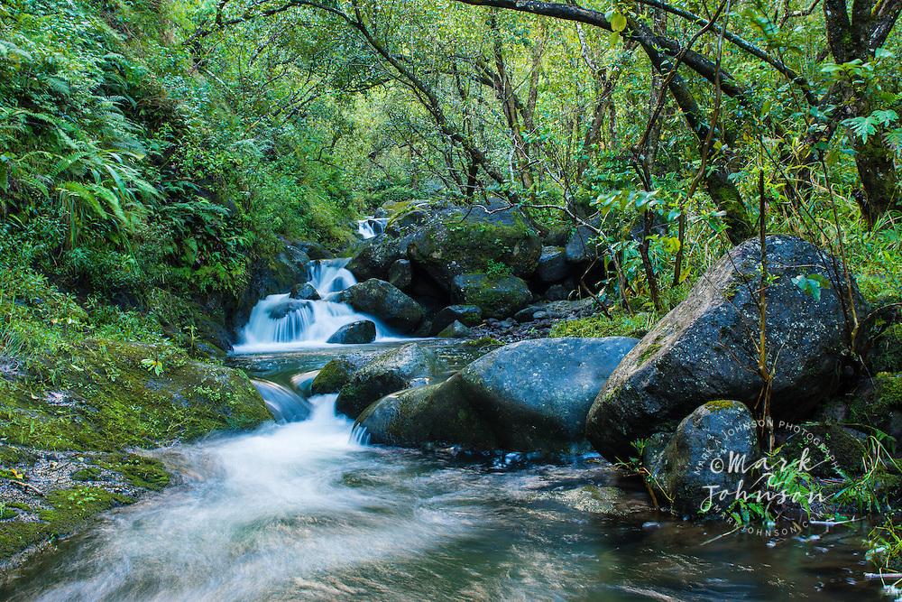Hanakoa Stream, Na Pali Coast, Kauai, Hawaii