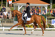 Anna Krishtopa - Ravelaire<br /> FEI European Dressage Championships for Young Riders and Juniors 2013<br /> © DigiShots
