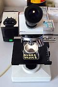 Foto di Donato Fasano Photoagency, nella foto : 13 07 2009 Bari Fluidotecnica zona industriale inventori della macchina che scinde l'olio dall'acqua nella fotoi microscopio nel laboratorio chimico
