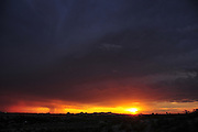 A microburst dumps rain around sunset in monsoon season in the Sonoran Desert,Tucson, Arizona, USA.