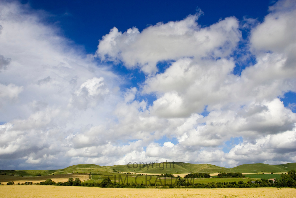 Fields in the Marlborough Downs, Wiltshire, England, United Kingdom