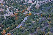 The road leading to the Chisos Basin in Big Bend National Park, with autumn color.