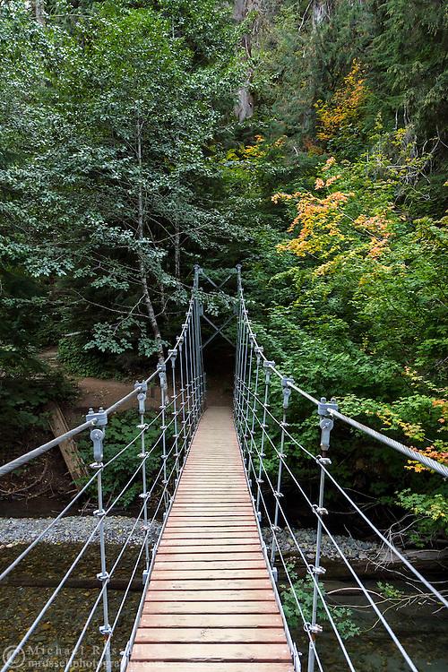 Bridge over the Ohanapecosh River on the Grove of the Patriarchs Trail in Mount Rainier National Park, Washington State, USA