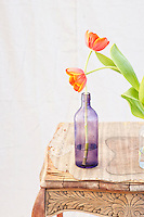 &quot;All the languages bow down to her &quot;<br />