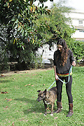 Young woman walks her dog in an urban park
