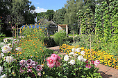 Natural Garden 859