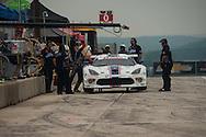 #33 Riley Motorsports Dodge Viper SRT: Ben Keating, Jeroen Bleekemolen
