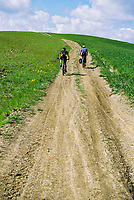 Two mountain bike riders on a dirt road in the early Spring wheat covered hills of Tuscany, Italy just outside Siena.