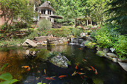 11203_Elmview_Fish_Pond_1_F.jpg
