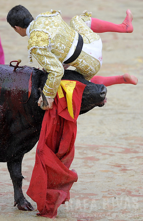 """Spanish matador Jose Miguel Perez """"Joselillo"""" is lifted by his  first Dolores Aguirre fighting bull """"Clavelino"""" during the sixth corrida of the San Fermin festivities, on July 12, 2008, in Pamplona, north of Spain."""