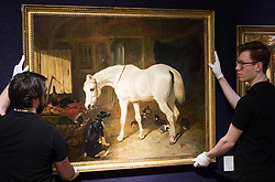 "Bonhams, Mayfair, London, February 26th 2016. Gallery technicians hang ""Old Friends"" by by one of the 19th century's most skilled painters of horses, John Frederick Herring and is anticipated to fetch between £80-100,000 at the Bonhams 19th Century Art Sale in Mayfair, London on March 2nd 2016. ///FOR LICENCING CONTACT: paul@pauldaveycreative.co.uk TEL:+44 (0) 7966 016 296 or +44 (0) 20 8969 6875. ©2015 Paul R Davey. All rights reserved."
