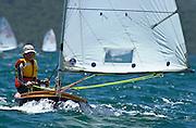 Wakatere Junior Regatta, P-Class. Auckland, NZ 13/12/2003