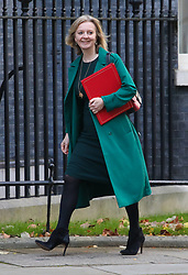 © Licensed to London News Pictures. 22/10/2019. London, UK. Liz Truss, Secretary of State for International Trade arrives at 10 Downing Street for a Cabinet meeting … As Boris Johnson tries to get his Brexit Bill  through Parliament. Photo credit: Alex Lentati/LNP