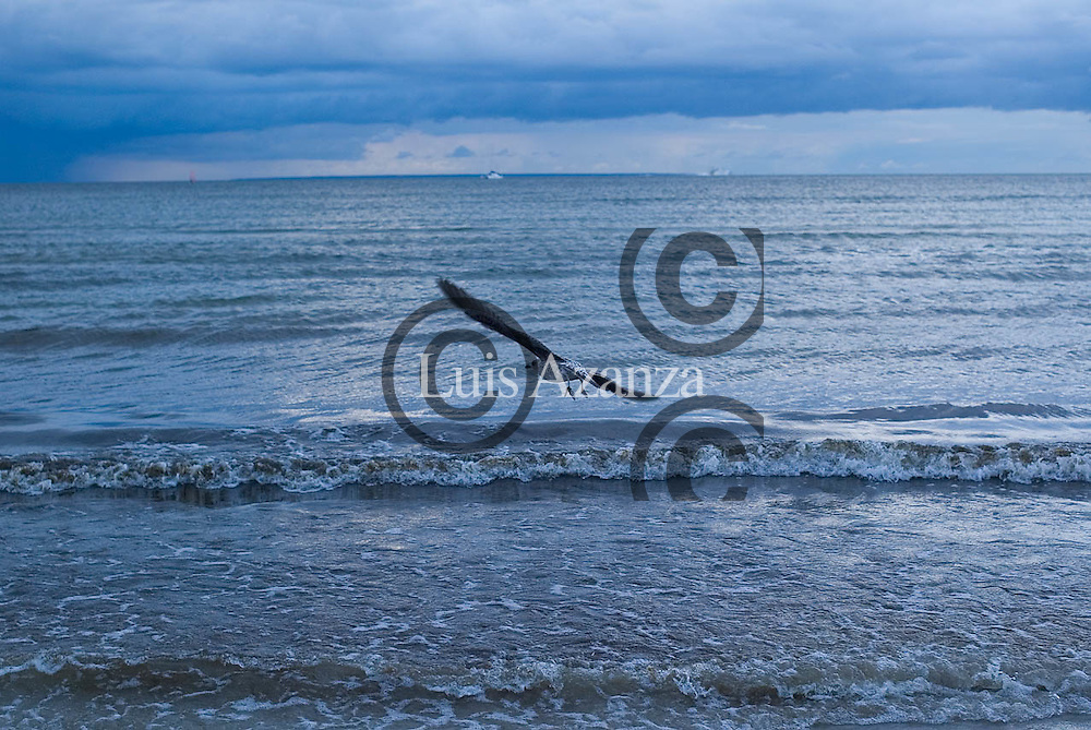 Beach in Tallin