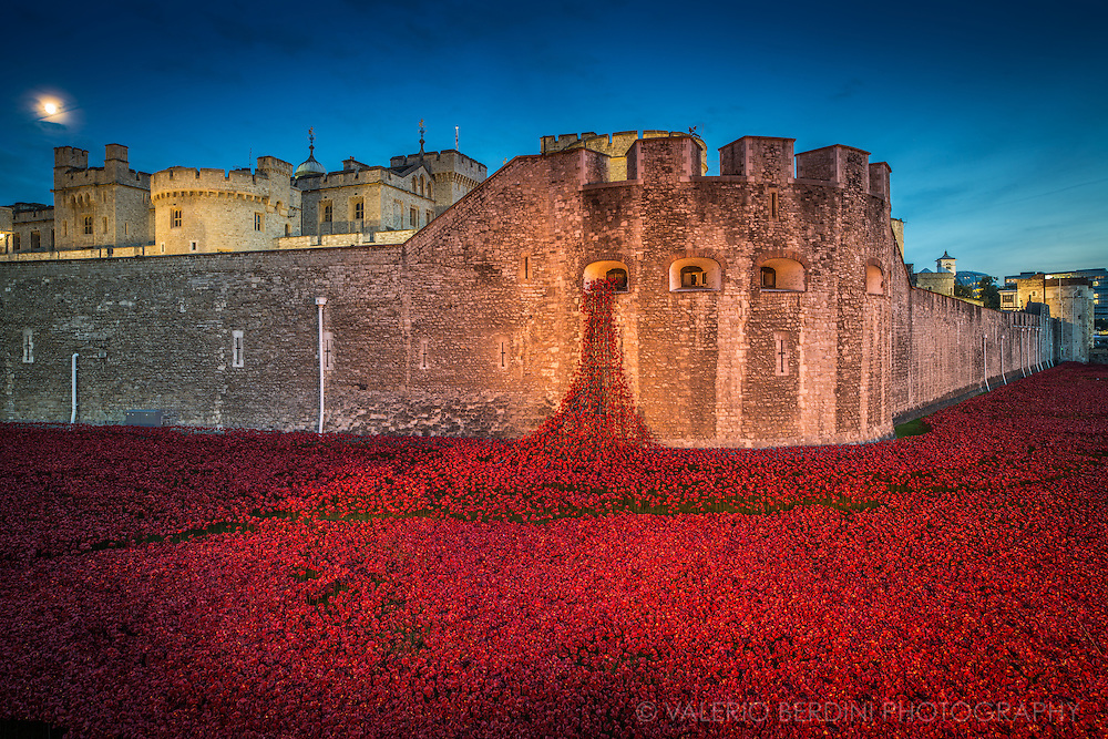 Full moon over Blood Swept Lands and Seas of Red. This is an evolving installation set at the Tower of London. It marks the centenary of the outbreak of the First World War. Created by ceramic artist Paul Cummins, with setting by stage designer Tom Piper, 888,246 ceramic poppies will progressively fill the Tower's famous moat.