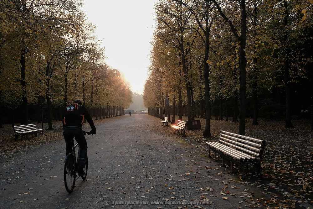 A man riding a bicycle through the Hofgarten Park in Düsseldorf, Germany on 26 October 2016.