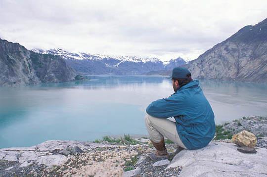 Glacier Bay National Park, View of west arm of park near Riggs Glacier. Alaska.