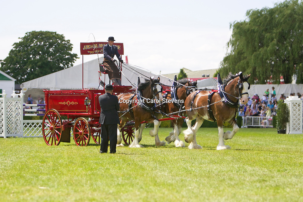 Mr John McIntyre's Clydesdale Team driven by Ronald Brewster<br />