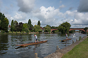 """Maidenhead, United Kingdom.  Start of a Singles Race.""""Thames Punting Club Regatta"""", Bray Reach.<br /> 10:34:19 Sunday  06/08/2017<br /> <br /> [Mandatory Credit. Peter SPURRIER Intersport Images}.<br /> <br /> LEICA Q (Typ 116) 28mm  f2.8   1/5000 /sec    100 ISO River Thames, .......... Summer, Sport, Sunny, Bright, Blue Skies, Skilful,"""