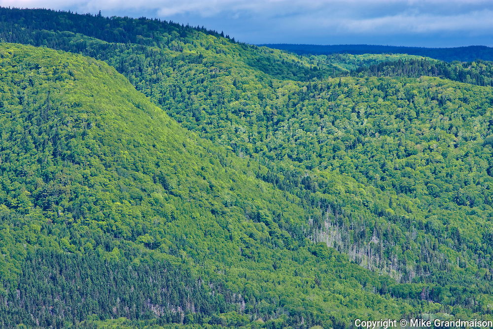 Appalachain Mountains chain. Cape Breton Island. Cabot Trail. <br />Near Sydney<br />Nova Scotia<br />Canada