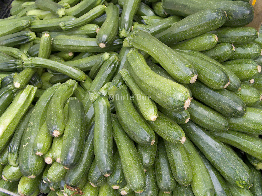 organic zucchini displayed at a green market