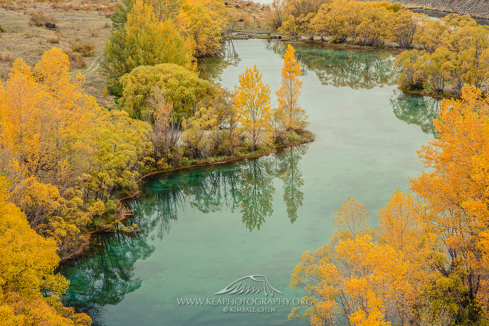Autumn colors along the Ruataniwha spillway, south of Lake Ruataniwha, in the Mackenzie Basin, New Zealand