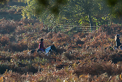 © Licensed to London News Pictures. 05/11/2017. LONDON, UK.  Horse riding at sunrise in Richmond Park on a bright autumn morning. Photo credit: IAN SCHOFIELD/LNP
