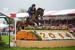 McEwen Tom (GBR) - Dry Old Party<br /> Cross Country - CCI4* <br /> Mitsubishi Motors Badminton Horse Trials 2014 <br /> © Hippo Foto - Jon Stroud