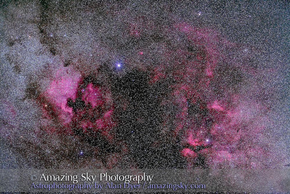 Cygnus nebulosity including NGC 7000 North America Nebula), IC 5070 (Pelican Nebula) and IC 1318 (Gamma Cygni) areas. Includes the dark region known as the Northern Coal Sack. Bright star is Deneb in Cygnus. This is a stack of 5 x 4 minute exposures at ISO 1600 with the Canon 135mm lens at f/2.8 and Canon 5D MkII (modified). Taken from home.