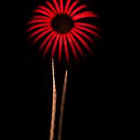 "Fireworks ""flower"""