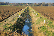 Arable fields and straight drainage ditch reclaimed marshland, Hollesley, Suffolk, England