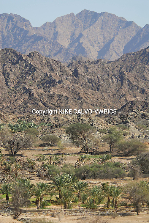 Dry natural Oasis in the Hahar mountains in Oman.