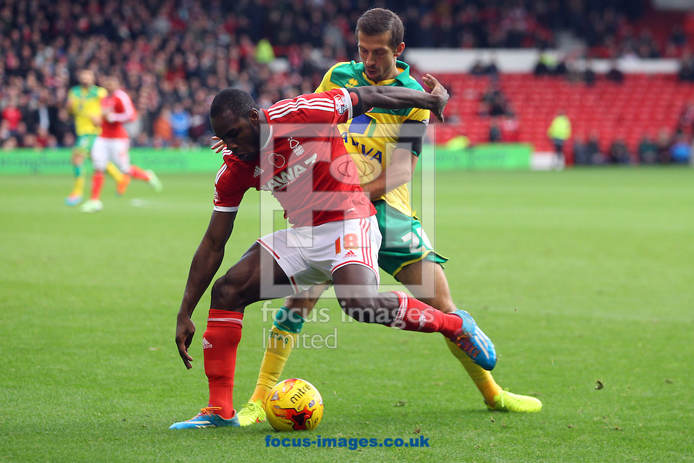 Michail Antonio of Nottingham Forest and Gary O&rsquo;Neil of Norwich in action during the Sky Bet Championship match at the City Ground, Nottingham<br /> Picture by Paul Chesterton/Focus Images Ltd +44 7904 640267<br /> 08/11/2014